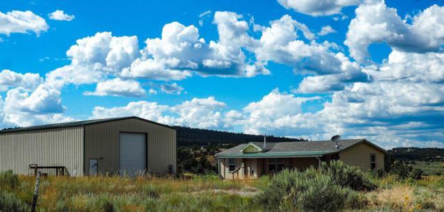 Lot 184 Pajarrito Rd Rancho El Vado, Rutheron, NM 87551 (MLS #201901947) :: The Desmond Group