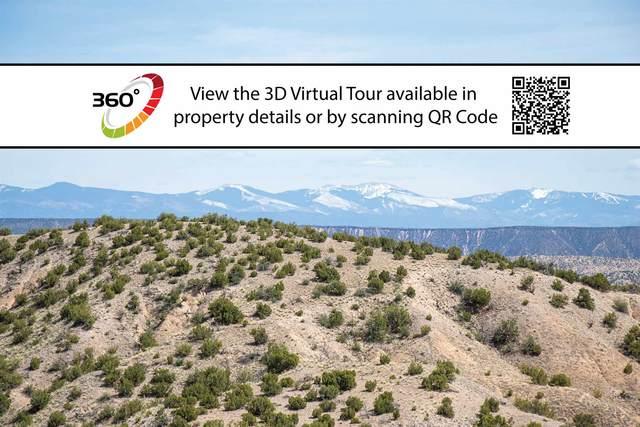 Lot 11 Vista De Pedernal, Medanales, NM 87548 (MLS #201903492) :: The Desmond Hamilton Group