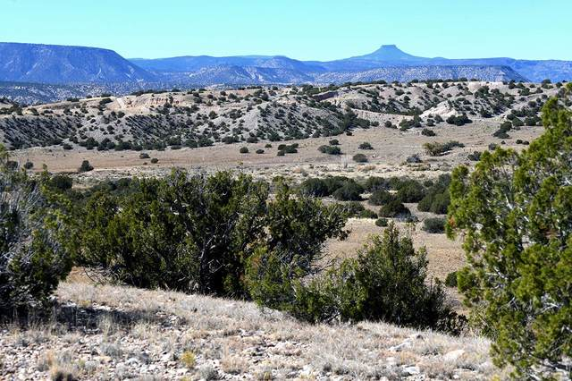 Lot 2 Blk 29 A, Abiquiu, NM 87510 (MLS #201904846) :: Stephanie Hamilton Real Estate