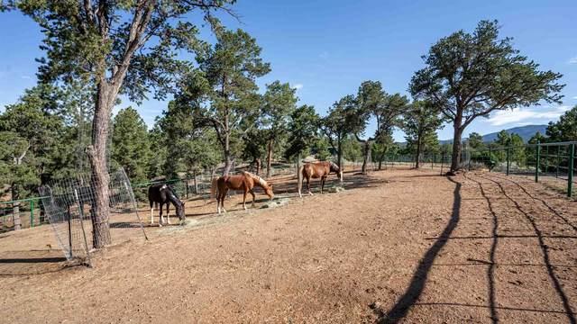 15 Lightning Ridge Road, Santa Fe, NM 87505 (MLS #202002862) :: Summit Group Real Estate Professionals