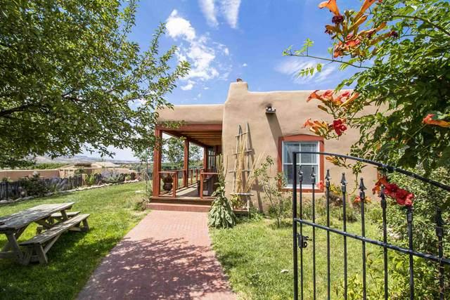 79 Pedernal Dr, Medanales, NM 87548 (MLS #202003057) :: Berkshire Hathaway HomeServices Santa Fe Real Estate
