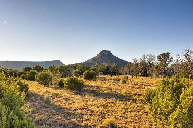 B28A County Road, Villanueva, NM 87583 (MLS #201902956) :: The Desmond Group