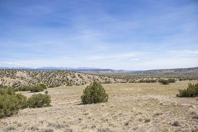 Lot 11 Vista De Pedernal, Medanales, NM 87548 (MLS #201903492) :: The Very Best of Santa Fe