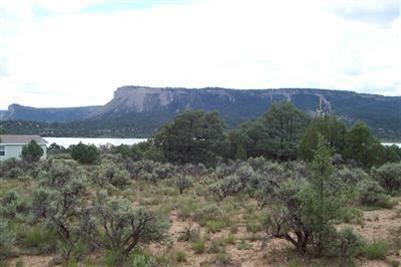 Pinon Ridge Rd, Los Ojos, NM 87551 (MLS #201403103) :: The Desmond Hamilton Group