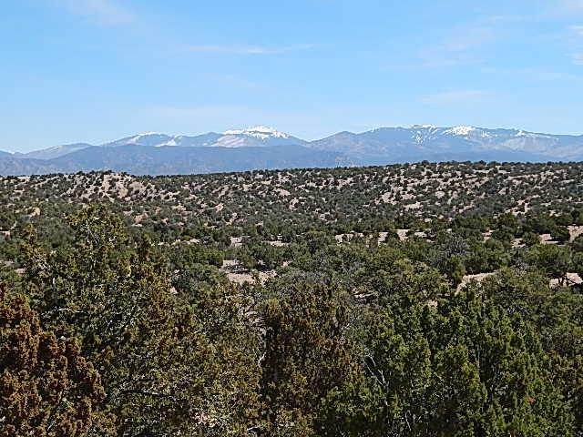 Santa Fe, NM 87506 :: The Bigelow Team / Realty One of New Mexico