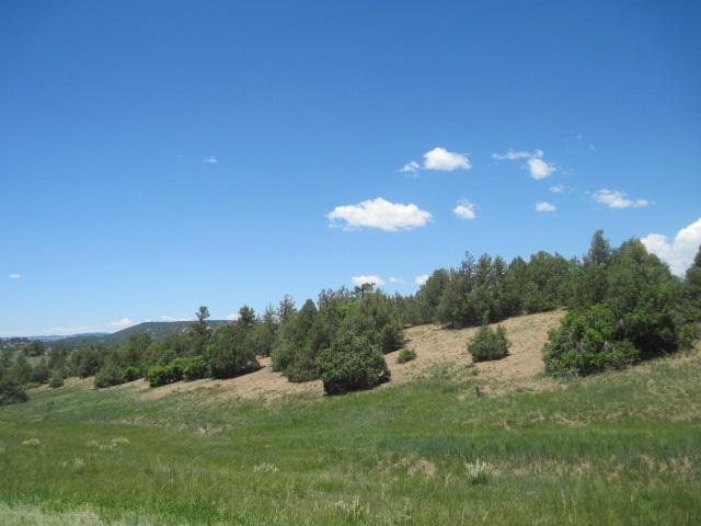Lot 12 Blk 6 Chama West Chama West, Chama, NM 87520 (MLS #201502762) :: The Desmond Group