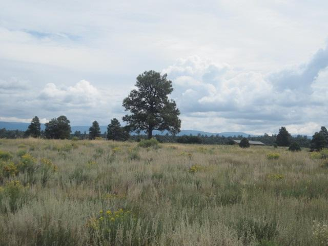 Lot 3 Blk 4 Chama West S/D Chama West, Chama, NM 87520 (MLS #201504086) :: The Very Best of Santa Fe