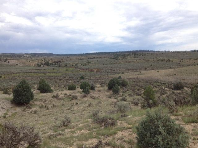 Unit 10, Lot 202, Ranchos Del Vado, Tierra Amarilla, NM 87575 (MLS #201601786) :: The Desmond Group