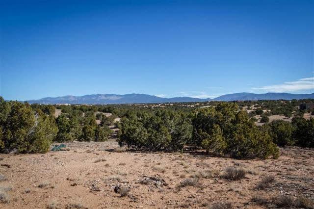 Camino Los Suenos, Lot 2-15, Santa Fe, NM 87506 (MLS #201602013) :: The Desmond Group