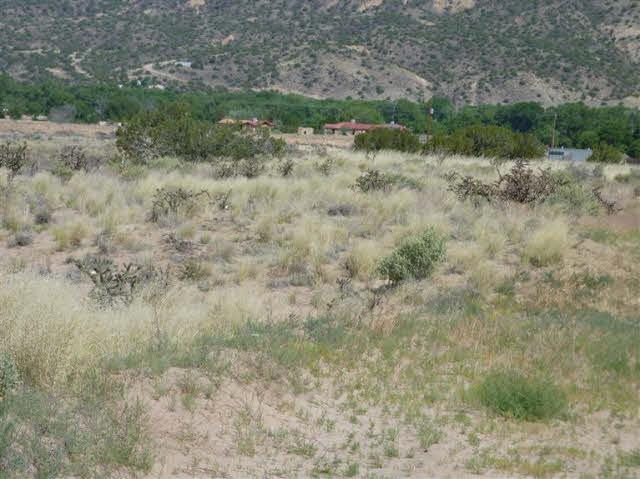 TRACT C C-1-A-1-A Of Cottonwood - Photo 1