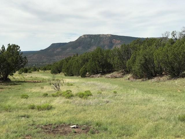 Ranchos Del Rito, Lot 8, San Jose, NM 87565 (MLS #201703969) :: The Desmond Group