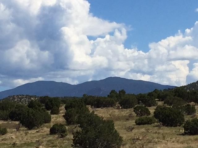99 Camino Acote Lot 13, Santa Fe, NM 87508 (MLS #201703997) :: The Very Best of Santa Fe