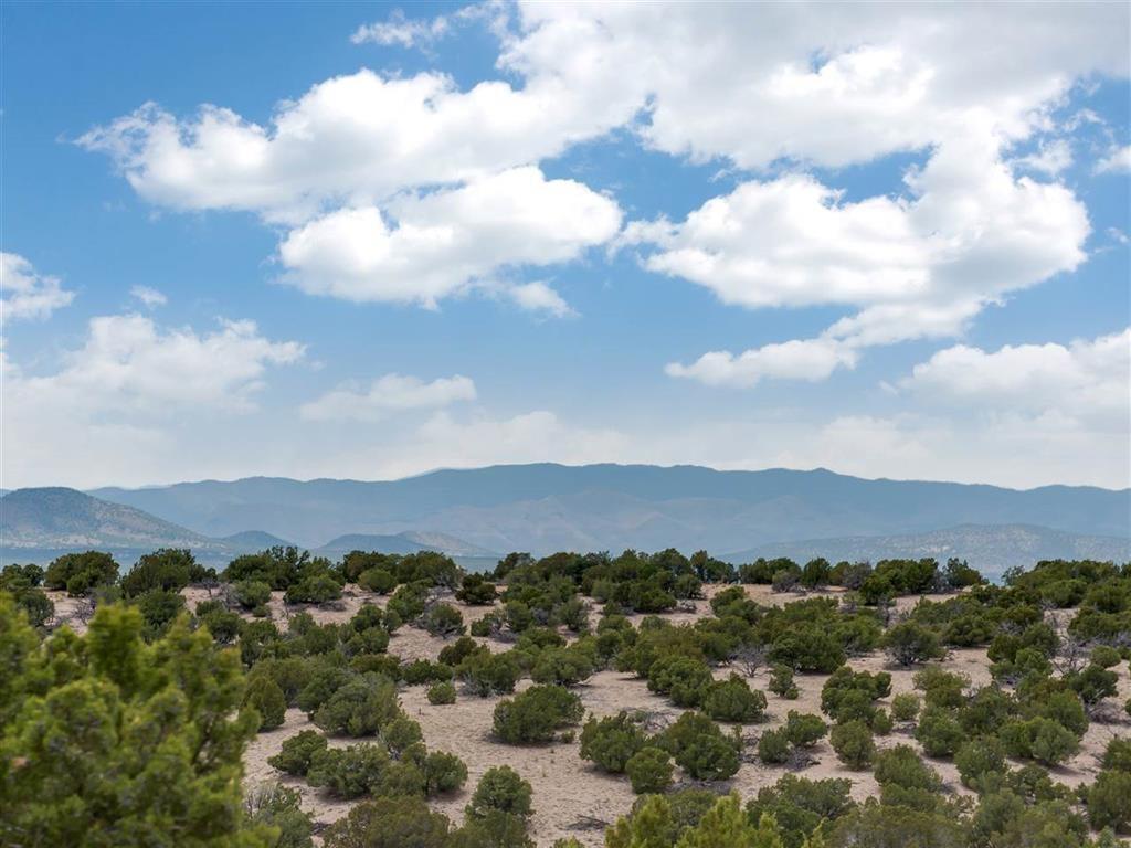19 Camino Barranca - Photo 1