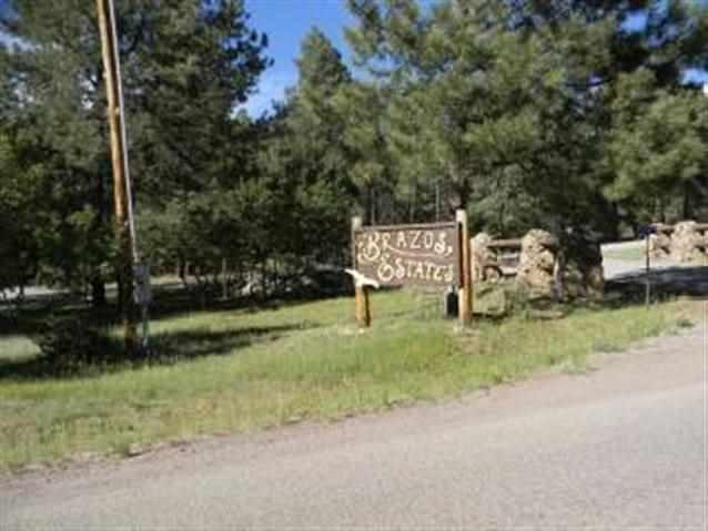 Lot 24 Brazos Estates - Photo 1