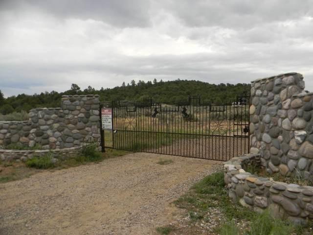 unit 5 Lot 60 Talavera, Tierra Amarilla, NM 87551 (MLS #201800098) :: The Very Best of Santa Fe
