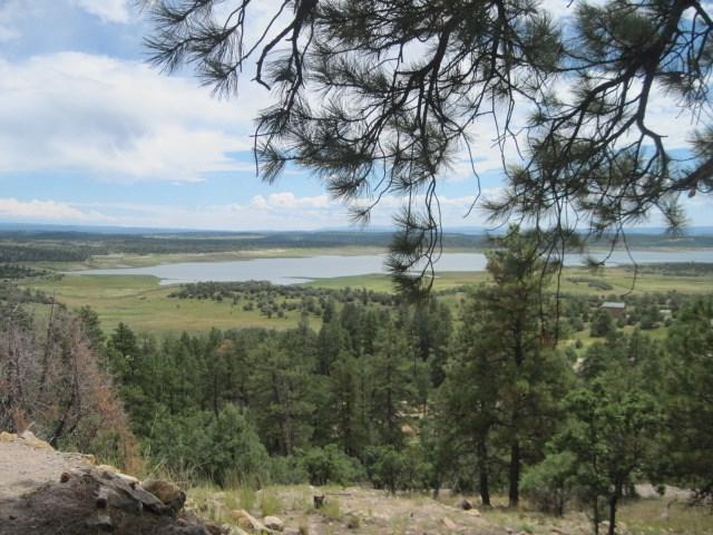 61 Alta Vista Trail, Tierra Amarilla, NM 87575 (MLS #201800616) :: The Desmond Group