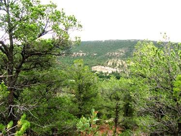 24A Windspirit Road, Santa Fe, NM 87508 (MLS #201800860) :: The Very Best of Santa Fe