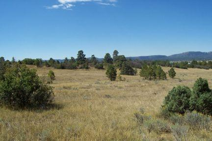 Bull Run  Chama West S/D Chama West, Chama, NM 87520 (MLS #201801070) :: The Desmond Group