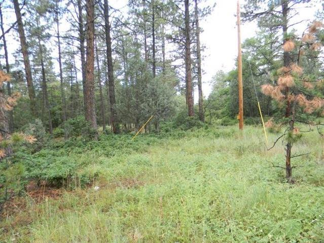 Lot 18 Block 2, Chama, NM 87520 (MLS #201801431) :: The Very Best of Santa Fe