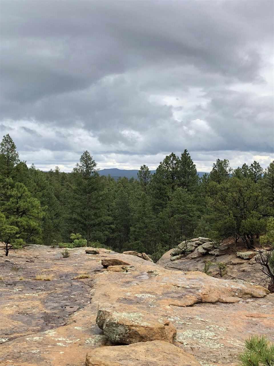 NSN Tract A Pinon Ridge - Photo 1