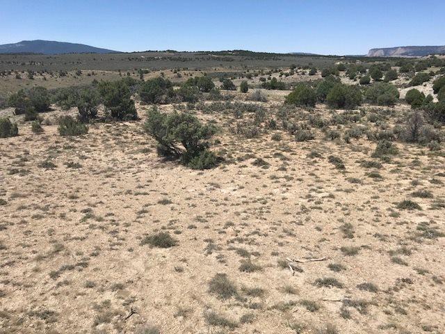 Unit 8 Tr 33 Rancho Del Vado, Tierra Amarilla, NM 87551 (MLS #201803442) :: The Desmond Group