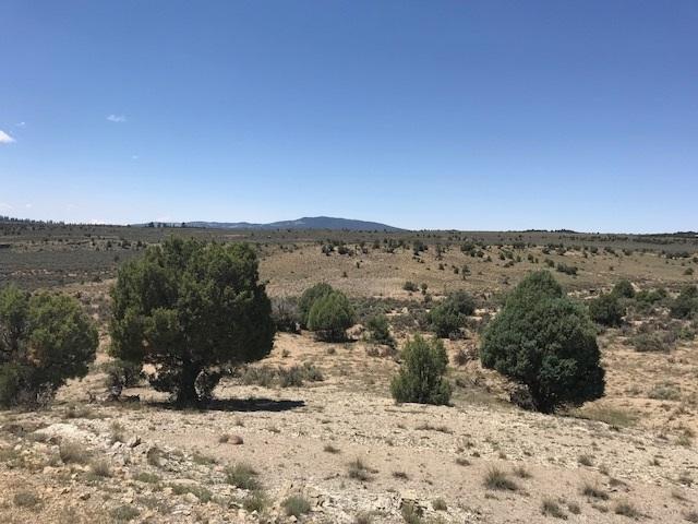 Unit 8 Tract 78 Ranchos Del Vado, Tierra Amarilla, NM 87551 (MLS #201803444) :: The Desmond Group