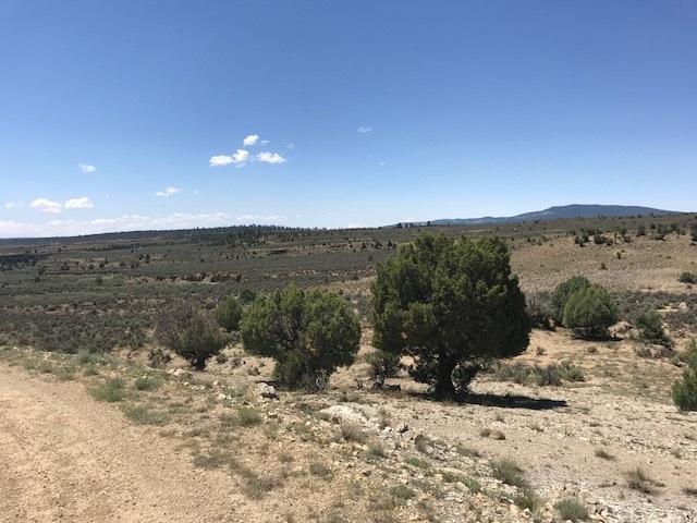 Unit 8 Tract 80 Ranchos Del Vado, Tierra Amarilla, NM 87551 (MLS #201803446) :: The Desmond Group