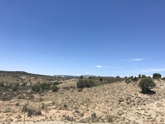 Unit 8 Tract 87 Ranchos Del Vado, Tierra Amarilla, NM 87551 (MLS #201803447) :: The Desmond Group