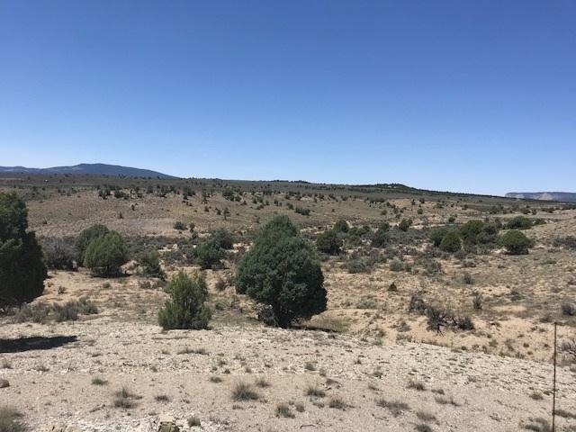 unit 11 Tr 82 Ranchos Del Vado, Tierra Amarilla, NM 87551 (MLS #201803448) :: The Desmond Group