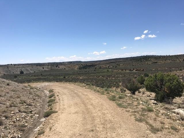 Unit 8 Tract 21 Ranchos Del Vado, Los Ojos, NM 87551 (MLS #201803449) :: The Desmond Group