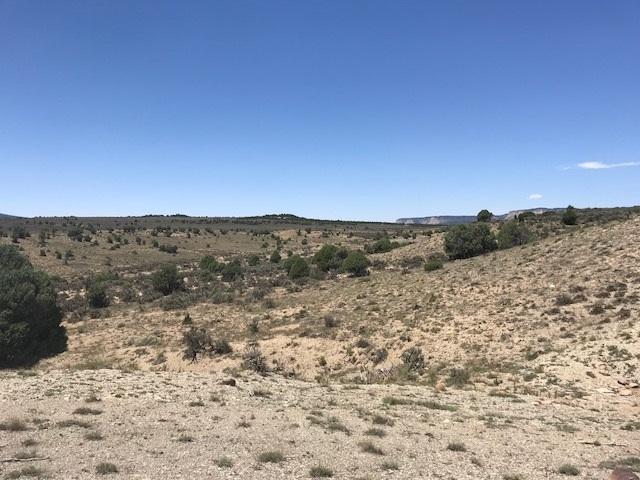 Unit 11 Tr 81A Ranchos Del Vado, Los Ojos, NM 87551 (MLS #201803450) :: The Desmond Group