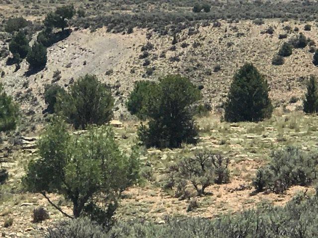 Unit 11 Tr 138 Rancho Del Vado, Tierra Amarilla, NM 87575 (MLS #201803453) :: The Desmond Group