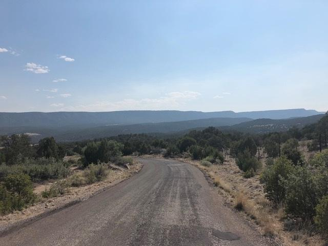 P1 B Hidden Valley Ranch Road, Ilfeld, NM 87538 (MLS #201803480) :: The Desmond Hamilton Group