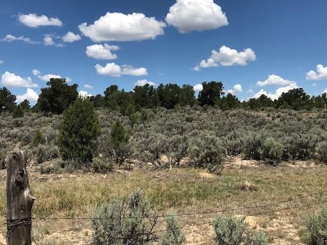 TBD Mile Marker 4.5 Nm St Hwy 112, Lindrith, NM 87046 (MLS #201803735) :: The Very Best of Santa Fe