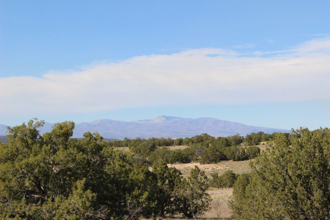 8 Via Palomita (Lot 18, Black Mesa) - Photo 1