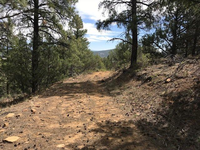 Lot 40 Unit D-1 Cr 322 El Poso, El Vado, NM 87575 (MLS #201804182) :: The Very Best of Santa Fe