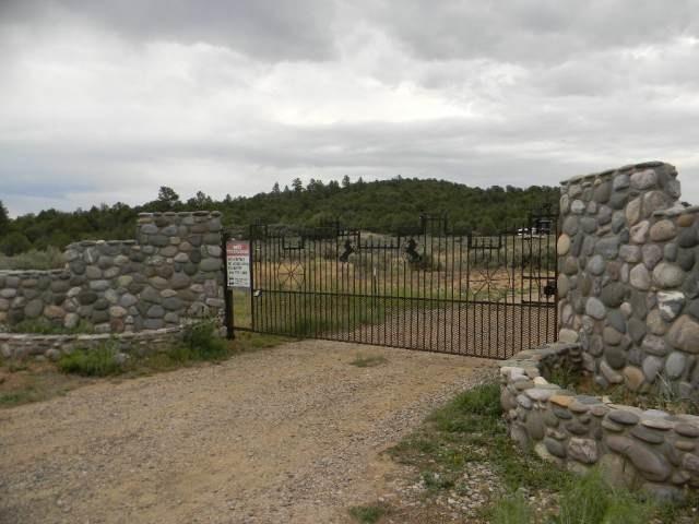 Lot 16, Unit4 Talavera Sd, Tierra Amarilla, NM 87551 (MLS #201804313) :: The Desmond Group