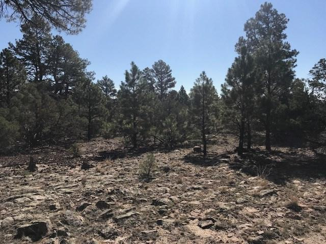 Tr 18 Vista De Heron, Rutheron, NM 87551 (MLS #201804521) :: The Desmond Group