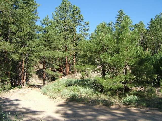 0 Ponderosa Drive, Jemez Springs, NM 87025 (MLS #201804543) :: The Very Best of Santa Fe