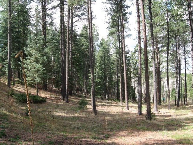 Lot 6 Unit 9 Sierra Los Pino, Jemez Springs, NM 87025 (MLS #201804837) :: The Desmond Group