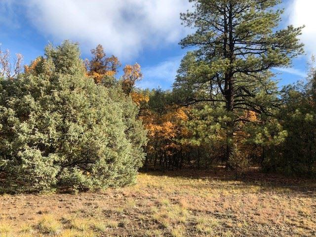 Tract B-1(A), Tract B-2, Chama, NM 87520 (MLS #201805151) :: The Desmond Group