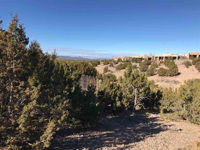 37 Camino De Vecinos, Santa Fe, NM 87507 (MLS #201805367) :: The Desmond Group