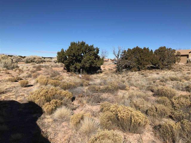 32 Calle Lemita, Santa Fe, NM 87507 (MLS #201805690) :: The Bigelow Team / Realty One of New Mexico
