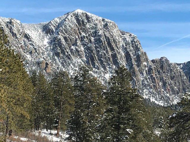 64 Rufous Ridge Road, Chama, NM 87520 (MLS #201900193) :: The Very Best of Santa Fe