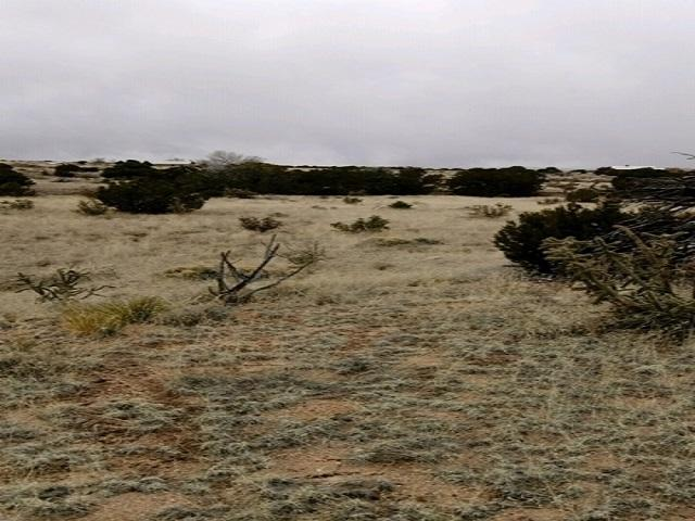 0 Coyote Crossing, Santa Fe, NM 87508 (MLS #201900692) :: The Desmond Group