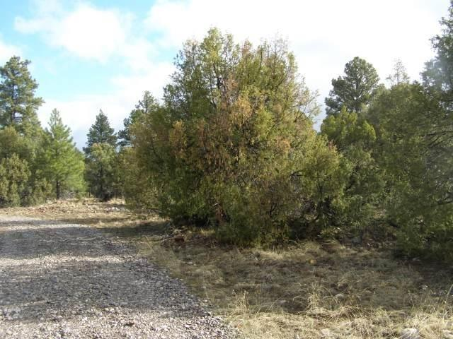 Lot 21 Vista De Heron, Rutheron, NM 87551 (MLS #201900886) :: The Bigelow Team / Realty One of New Mexico