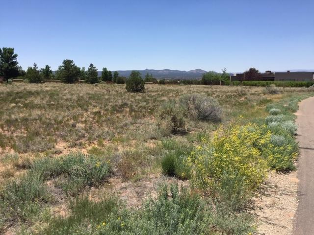 77 Via Pampa Lot 98 Unit III, Santa Fe, NM 87506 (MLS #201903011) :: The Desmond Group
