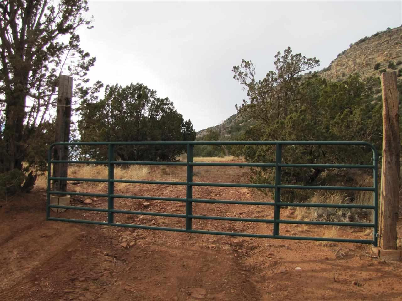 Tract 6A1 Smcr B31a Gonzales Ranch - Photo 1