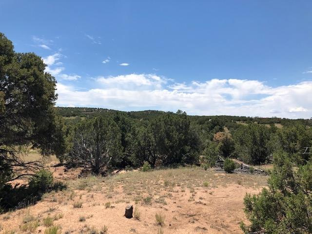 0 La Tierra Phase III, Santa Fe, NM 87506 (MLS #201903317) :: Berkshire Hathaway HomeServices Santa Fe Real Estate