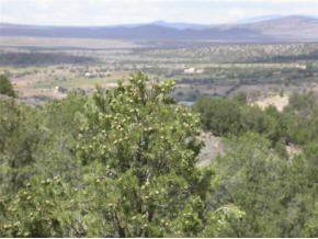 LOT 16 Sandia Canyon, Arroyo Hondo, NM 87513 (MLS #201904642) :: The Desmond Group